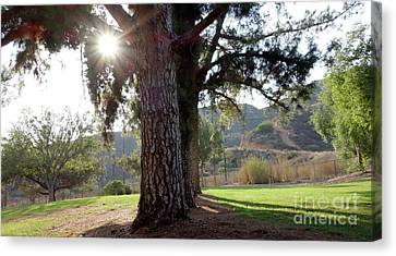 Relaxing In The Park Canvas Print by Nina Prommer