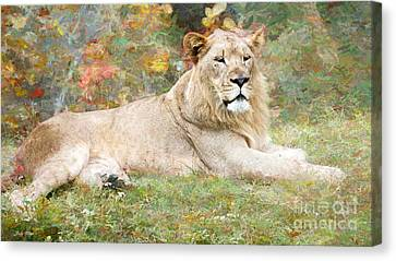 Relaxing Canvas Print by Judy Kay