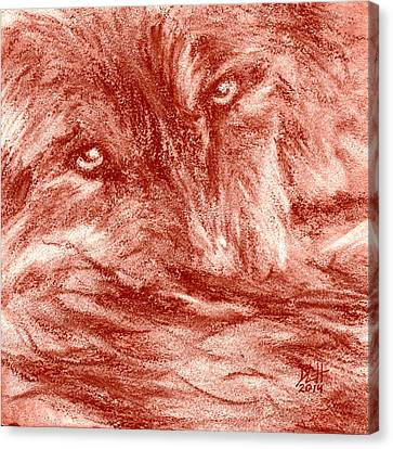 Seedling Wolf 0008 Canvas Print by David Herman