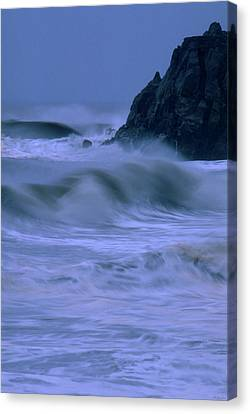 Relentless Canvas Print by Soli Deo Gloria Wilderness And Wildlife Photography