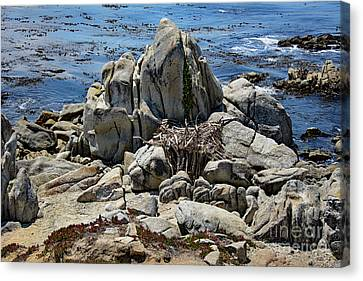 Canvas Print featuring the photograph Remains Of Ancient Rocks At Carmel Point by Susan Wiedmann