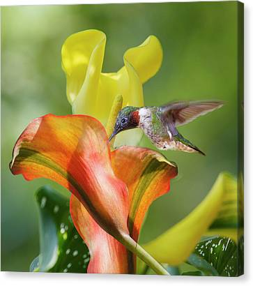 Sweet Scene Canvas Print - Remarkable Inspiration  by Betsy Knapp