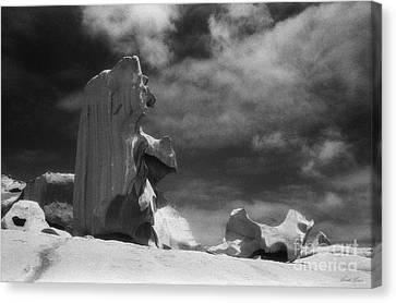 Kangaroo Canvas Print - Remarkable Rocks 6 by Linda Lees