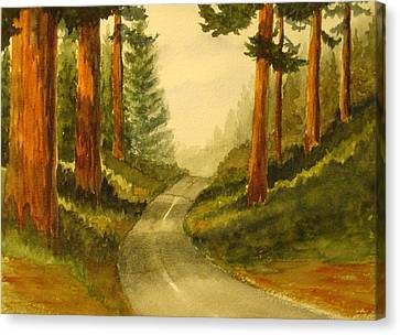 Remembering Redwoods Canvas Print by Marilyn Jacobson