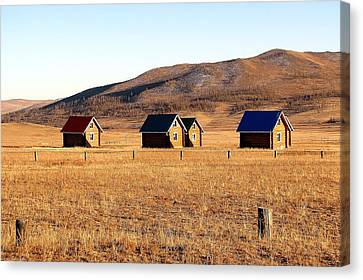 Remote Mongolia Canvas Print by Diane Height