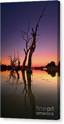 Canvas Print featuring the photograph Renmark South Australia Sunset by Bill Robinson
