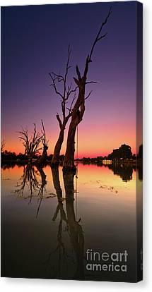 Renmark South Australia Sunset Canvas Print by Bill Robinson