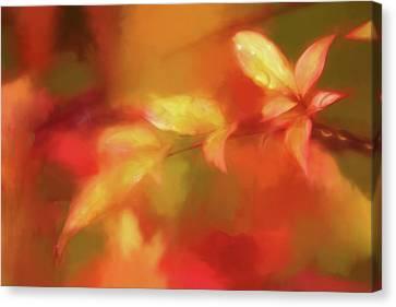 Renoir's Autumn Canvas Print by Terry Davis