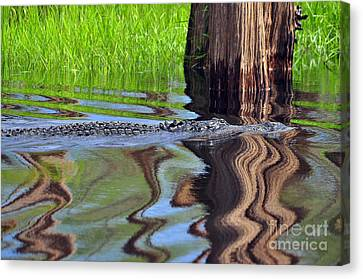 Canvas Print featuring the photograph Reptile Ripples by Al Powell Photography USA