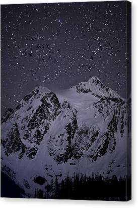 Rescued Canvas Print