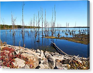 Canvas Print featuring the photograph Reservoir by Angel Cher