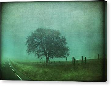 Rural Landscapes Canvas Print - Resolution by Laurie Search