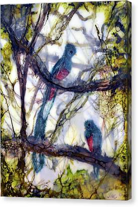 Resplendent Quetzal #1 Canvas Print