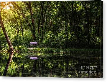 Resting Bench At The Chickasaw National Recreation Area Canvas Print by Tamyra Ayles