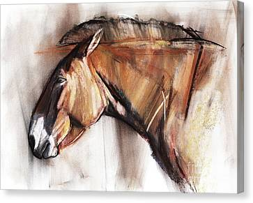 Resting Horse Canvas Print by Mark Adlington