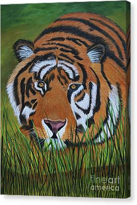Resting Tiger  Canvas Print by Myrna Walsh