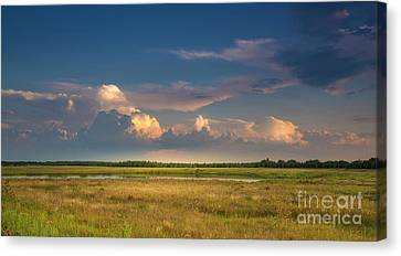 Stormy Weather Canvas Print - Restless Land by Marvin Spates