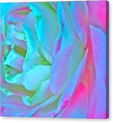 Restless Romantic Canvas Print by Gwyn Newcombe
