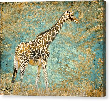 Pittsburgh Zoo Canvas Print - Reticulated by Arne Hansen