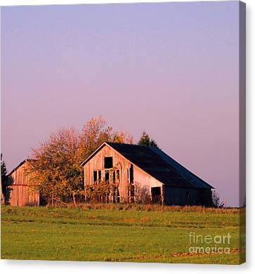 Retired Barns Canvas Print