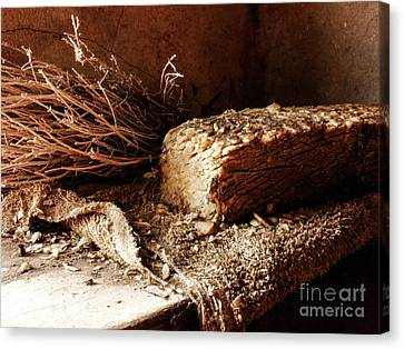 Retired Laundry Soap Canvas Print