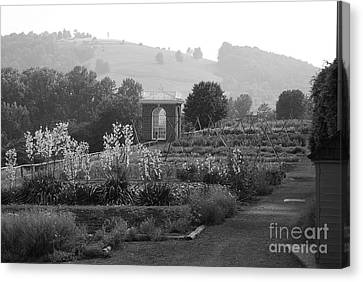 Canvas Print featuring the photograph Retreat by Eric Liller