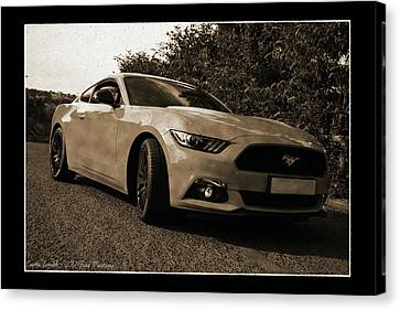Pleasure Driving Canvas Print - Retro 2017 Ford Mustang by Curtis Smith