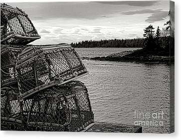 Rocky Maine Coast Canvas Print - Retro Maine Scene  by Olivier Le Queinec