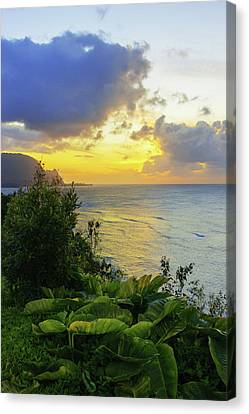 Canvas Print featuring the photograph Return by Chad Dutson