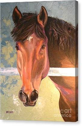 Bay Horse Canvas Print - Reverie by Susan A Becker