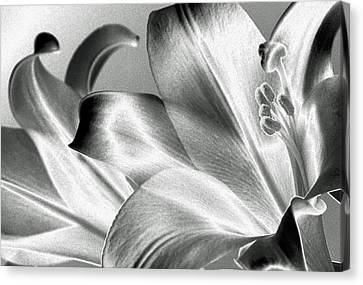 Canvas Print featuring the photograph Reverse by Steven Huszar
