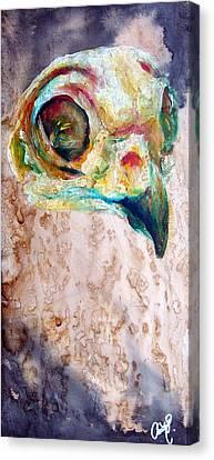 Revolution Burrowing Owl Canvas Print by Christy  Freeman