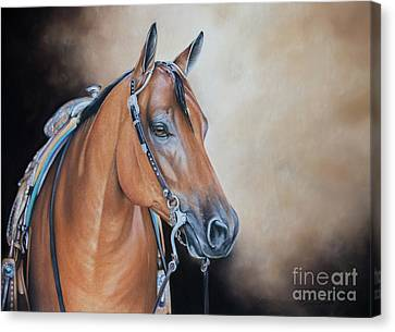 Bay Horse Canvas Print - Rewind And Repeat by Joni Beinborn