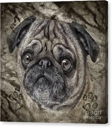 Animal Artist Canvas Print - Rex by Shafawndi Heartski