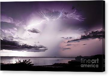 White Lightning Canvas Print by Quinn Sedam