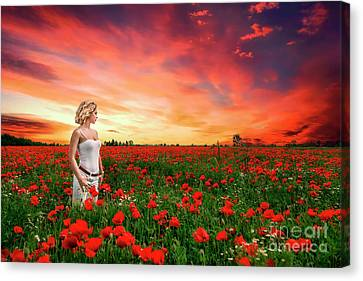 Rhapsody In Red Canvas Print