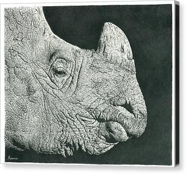 Large Mammals Canvas Print - Rhino Pencil Drawing by Remrov