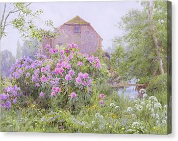 Rhododendrons By A Watermill Canvas Print by George Marks