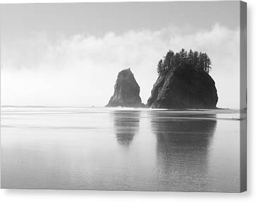 Olympic National Park Canvas Print - Rialto Seastacks by Ryan Scholl