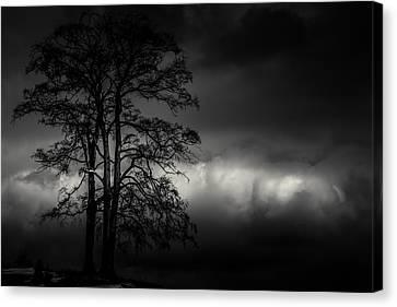 Ribbon Of Light Canvas Print by Chris Fletcher