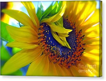 Rich In Pollen Canvas Print by Gwyn Newcombe