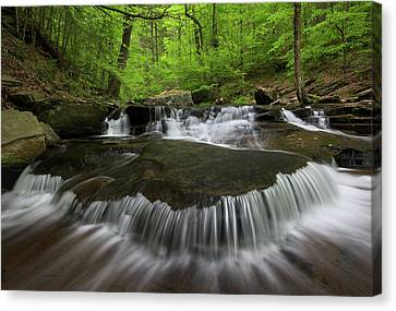 Ricketts Glen State Park Pennsylvania Canvas Print by Mark VanDyke