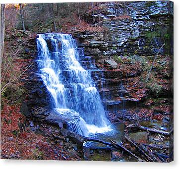 Canvas Print featuring the photograph Ricketts Glen Waterfall 3941  by David Dehner