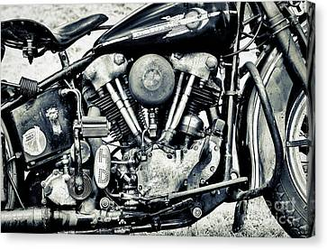 Harley Davidson Canvas Print - Ride A Knuck by Tim Gainey