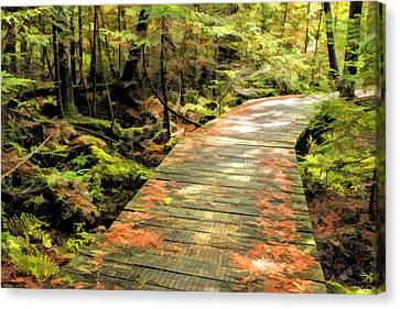 Ridges Sanctuary Boardwalk Canvas Print