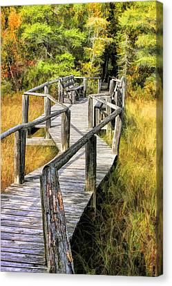 Wetland Canvas Print - Ridges Sanctuary Crossing by Christopher Arndt