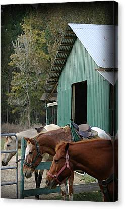 Canvas Print featuring the digital art Riding Horses by Kim Henderson