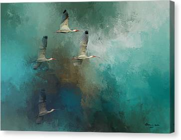 Ibis Canvas Print - Riding The Winds by Marvin Spates