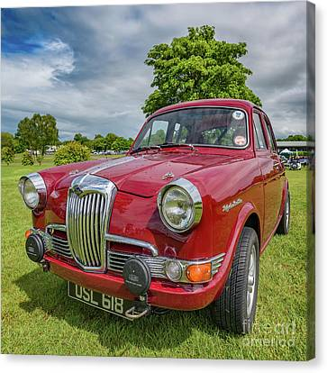 Riley 1.5 Canvas Print by Adrian Evans
