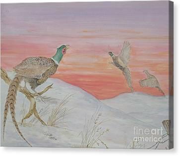 Ringnecks At Sunrise Canvas Print